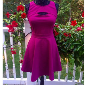 Like New Bebe fit and flare dress
